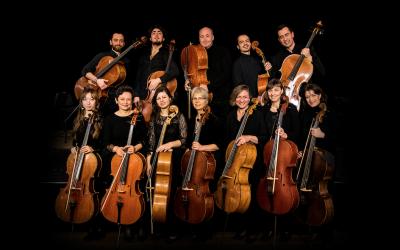 Die 12 Hellweger Cellisten